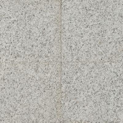 GRANIT, LEOPARD WHITE, PLACAJ, 40X40, 3, FIAMAT